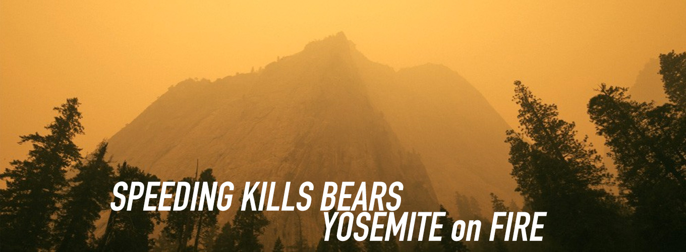Speeding Kills Bears: Yosemite on Fire