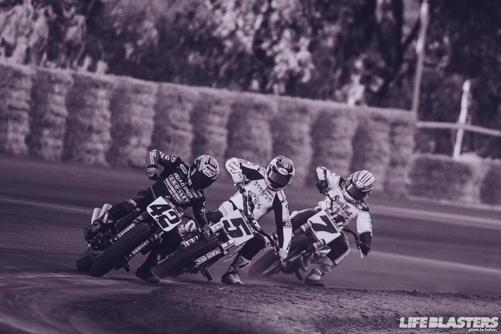 bohan ama flat track motorcycle harley davidson racing